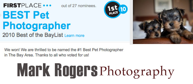 Voted #1 Pet Photographer Again in 2010