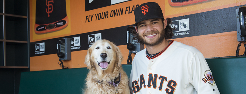 San Francisco Giant goes to the dogs for celebrity pet calendar