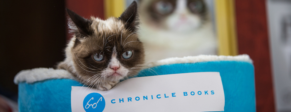 grumpy cat in blue bed with chronicle books logo