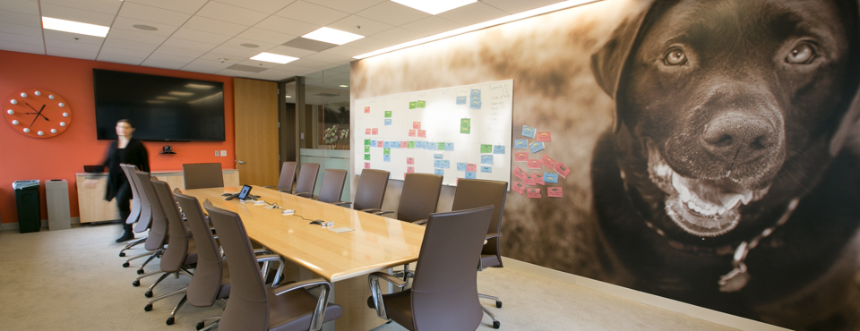 giant photo of dog in conference room