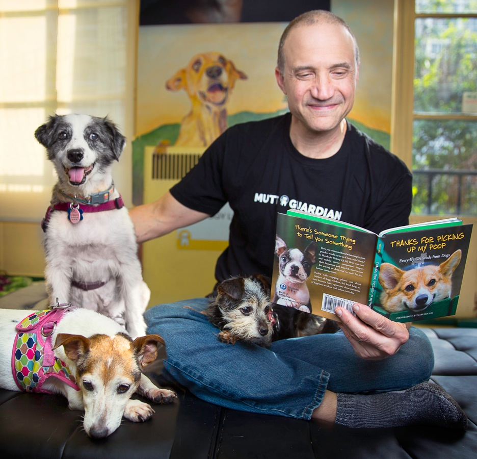 Mark Rogers reading his book with senior dogs