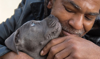 puppy kissing man