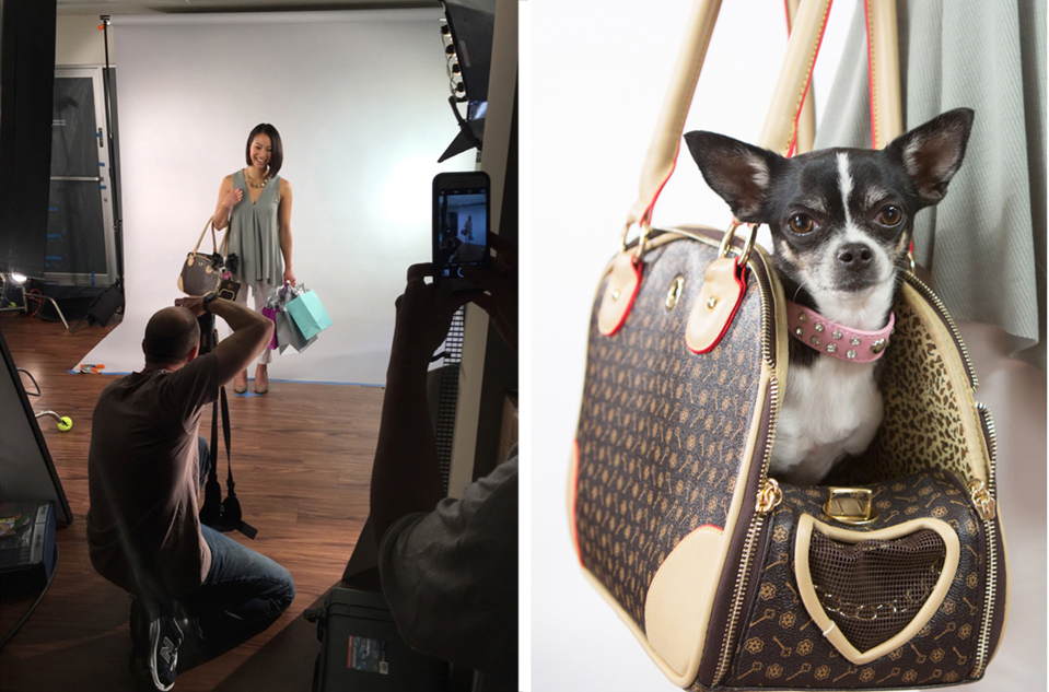 behind-the-scenes-chihuahua-fashionista2