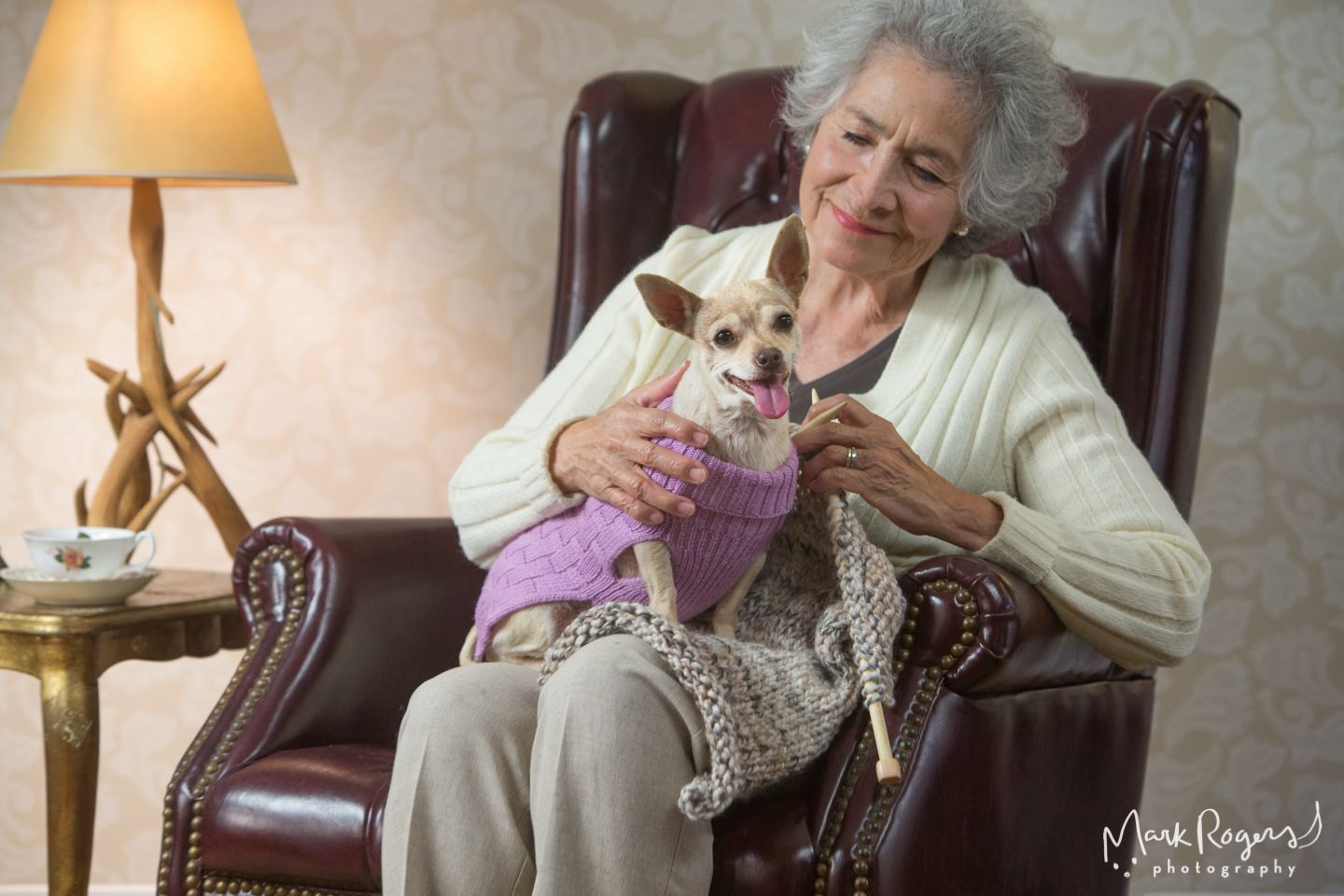 woman-knitting-with-chihuahua