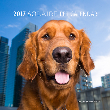 Pets Star in Promotional Calendar