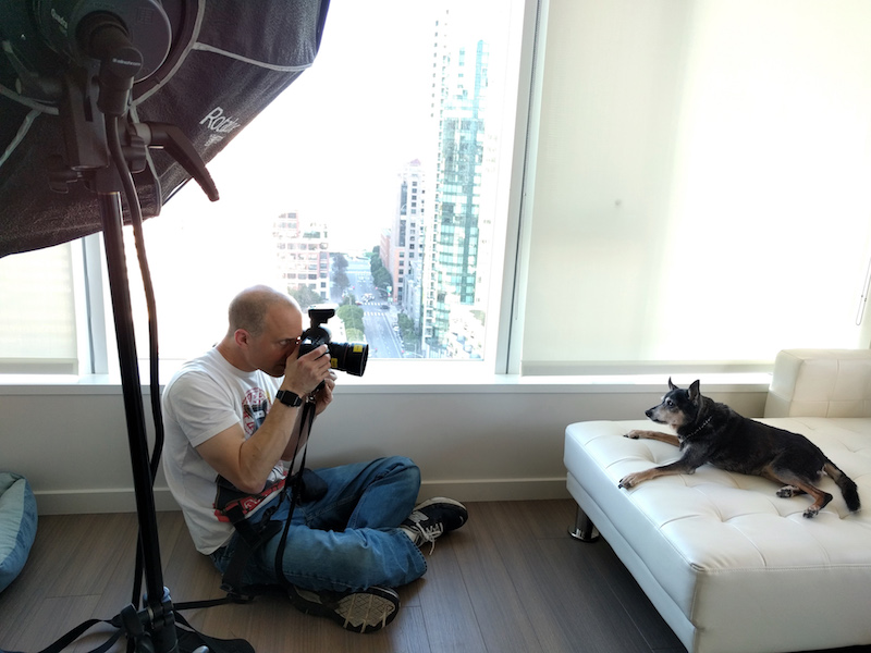 mark rogers photographing dog on couch