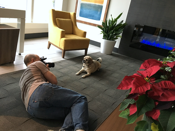 mark rogers photographing puggle