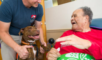 Top Prize for Animal-Assisted Therapy Photography